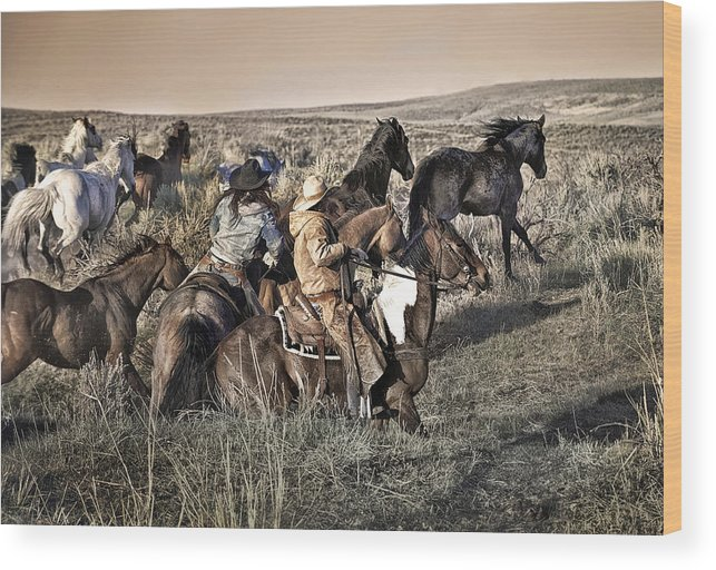 Horse Wood Print featuring the photograph Just another Monday Morning by Pamela Steege