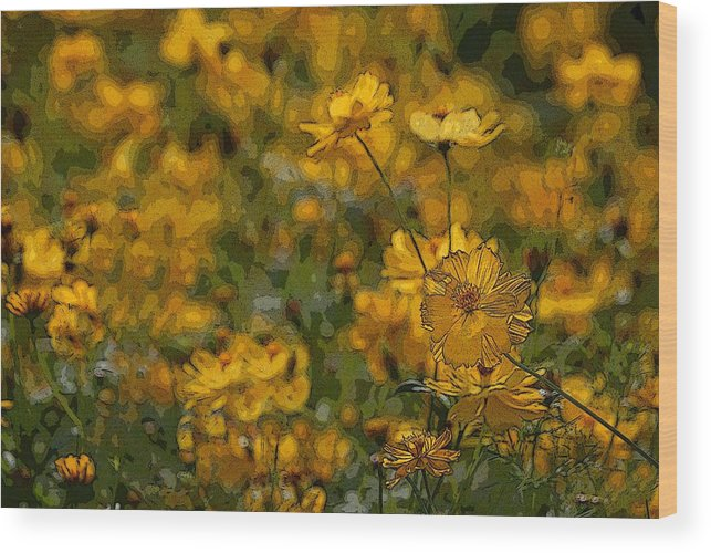 Yellow Wood Print featuring the photograph Summer Flowers by Ed Zirkle