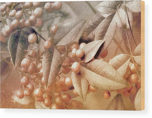 Floral Wood Print featuring the photograph Berry and Leaf Brocade by Holly Kempe