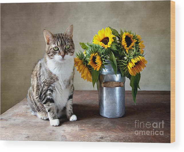 Cat Wood Print featuring the painting Cat and Sunflowers by Nailia Schwarz