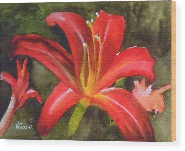 Red Wood Print featuring the painting Daylily Study IV by Jean Blackmer
