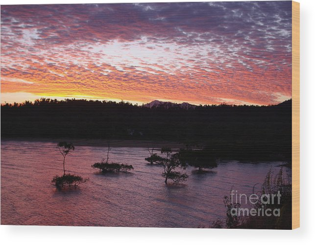 Landscape Wood Print featuring the photograph Four Elements Sunset Sequence 3 Coconuts Qld by Kerryn Madsen - Pietsch
