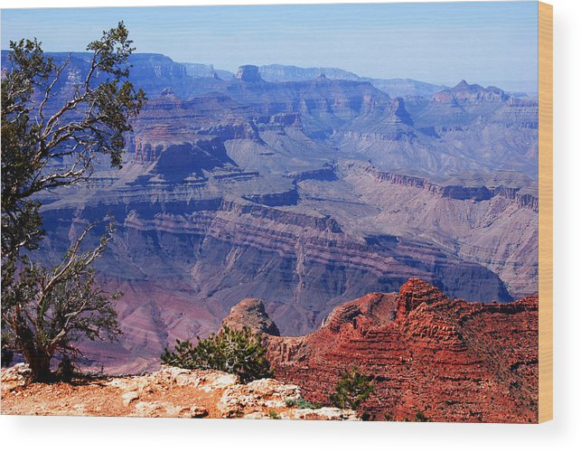 Photography Wood Print featuring the photograph Grand Canyon View by Susanne Van Hulst