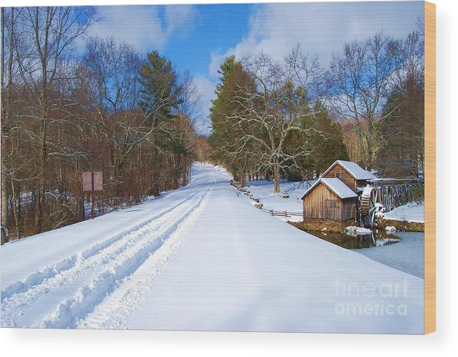 Snow Wood Print featuring the photograph Lonely by Eric Liller