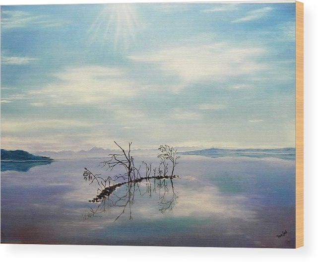 Late Novemeber In Bavaria Wood Print featuring the painting November on a bavarian lake by Helmut Rottler