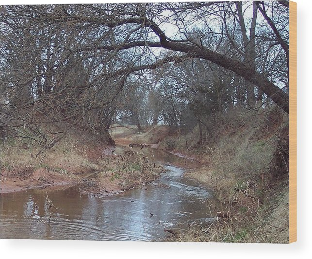 Landscapes Wood Print featuring the photograph Rivers Bend by Shari Chavira