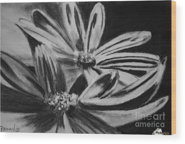 Flowers Wood Print featuring the drawing Two Flowers by Regan J Smith