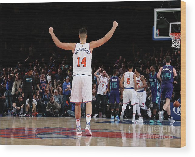 Guillermo Hernangómez Geuer Wood Print featuring the photograph Charlotte Hornets V New York Knicks by Nathaniel S. Butler
