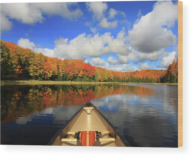 Scenics Wood Print featuring the photograph Autumn In A Canoe by Photos By Michael Crowley