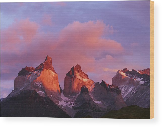 Scenics Wood Print featuring the photograph Chile, Torres Del Paine National Park by Paul Souders
