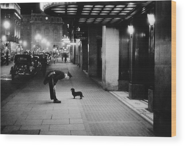 Piccadilly Circus Wood Print featuring the photograph Commissionaires Dog by Kurt Hutton