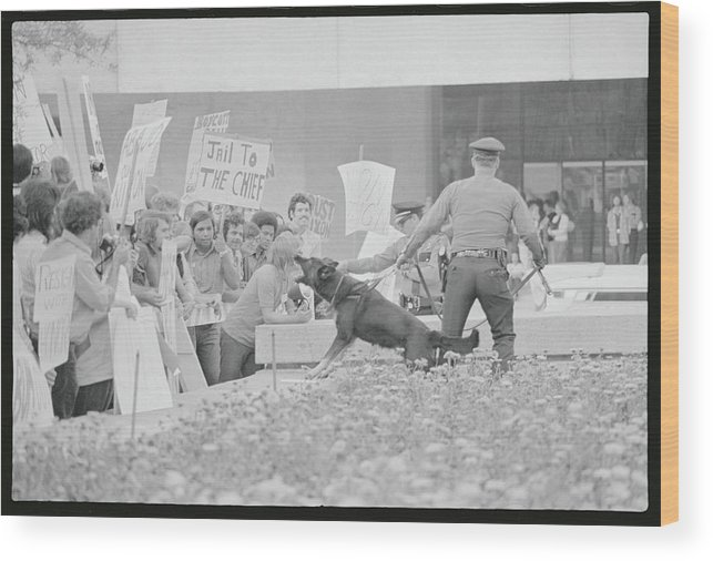 Crowd Wood Print featuring the photograph Crowd Protesting President Nixon by Bettmann