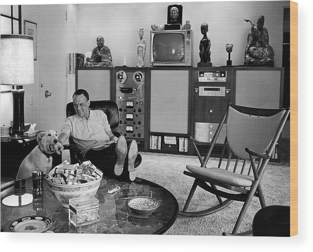 Pets Wood Print featuring the photograph Entertainer Frank Sinatra Relaxing W by John Dominis
