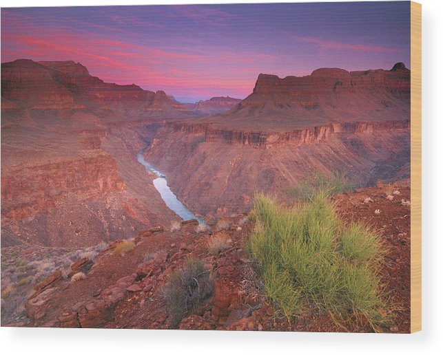 Scenics Wood Print featuring the photograph Grand Canyon Sunrise by David Kiene