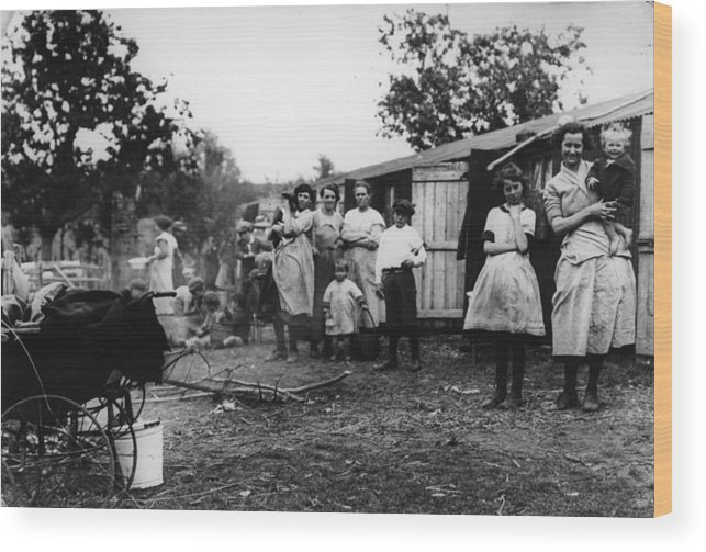 Camping Wood Print featuring the photograph Hop Camp by Hulton Archive