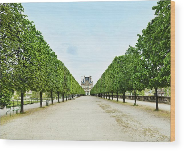Scenics Wood Print featuring the photograph Louvre In Paris by Nikada