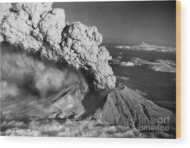 1980-1989 Wood Print featuring the photograph Mount St. Helens Eruption And Mount Hood by Bettmann