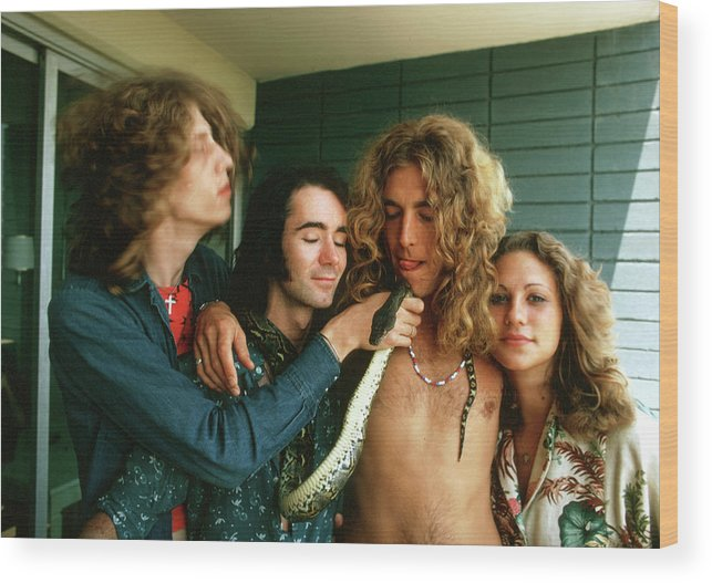 Singer Wood Print featuring the photograph Robert Plant At The Riot House by Michael Ochs Archives