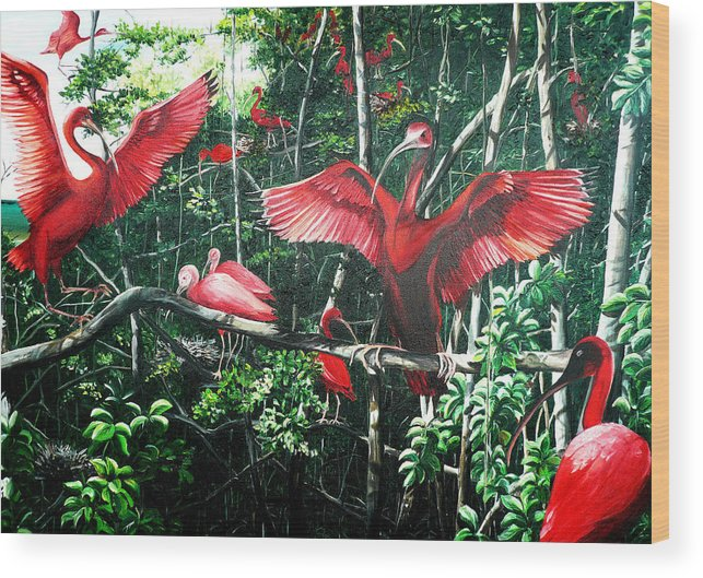 Caribbean Painting Scarlet Ibis Painting Bird Painting Coming Home To Roost Painting The Caroni Swamp In Trinidad And Tobago Greeting Card Painting Painting Tropical Painting Wood Print featuring the painting Scarlet Ibis by Karin Dawn Kelshall- Best