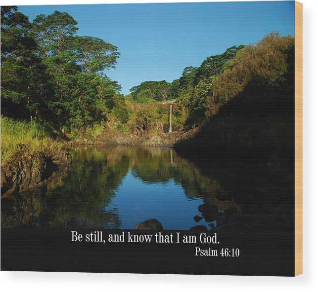 Christian Wood Print featuring the photograph Secret Pond by Steven Rice