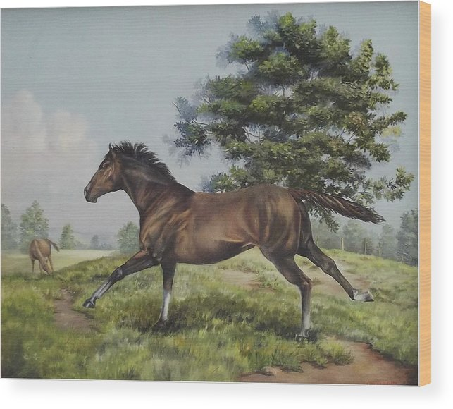 Horse In Field Wood Print featuring the painting Energy To Burn by Wanda Dansereau