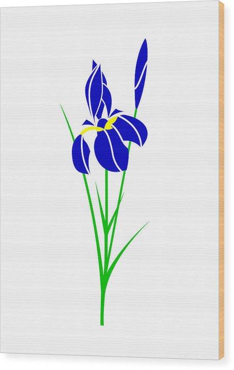Iris Wood Print featuring the digital art Iris by Asbjorn Lonvig
