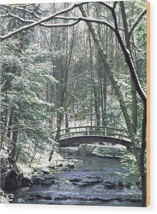 Snow Wood Print featuring the photograph 092508-1 by Mike Davis
