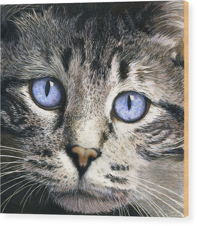 Cat Wood Print featuring the painting The Eyes Have It by Ted Head