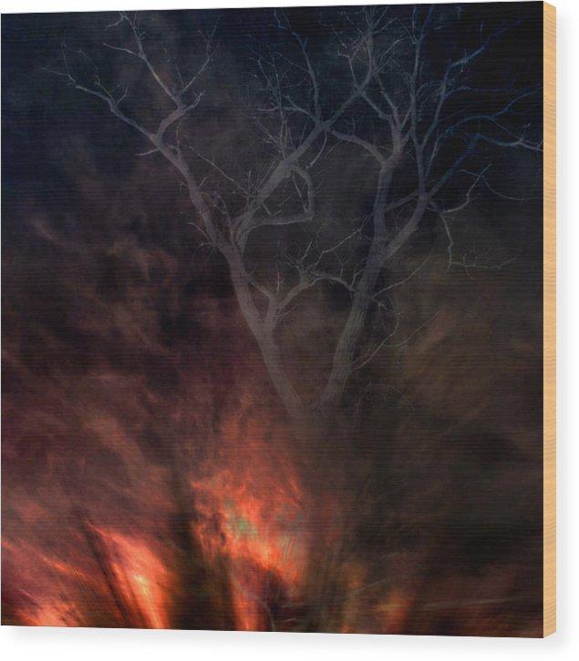 Phoenix Wood Print featuring the digital art Phoenix One by Randal Bruck