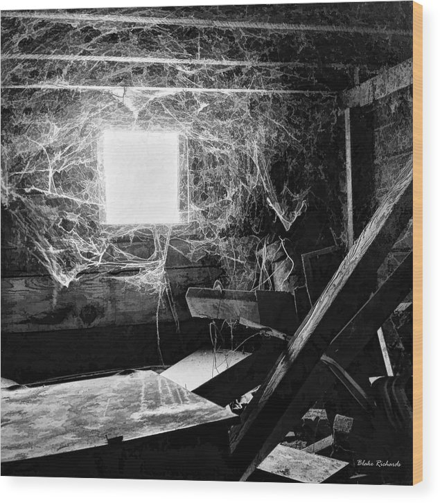 Wood Print featuring the photograph Webbed Window by Blake Richards