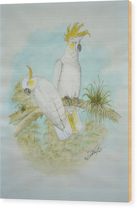 Birds Wood Print featuring the painting Cockatoos by Dennis Vebert
