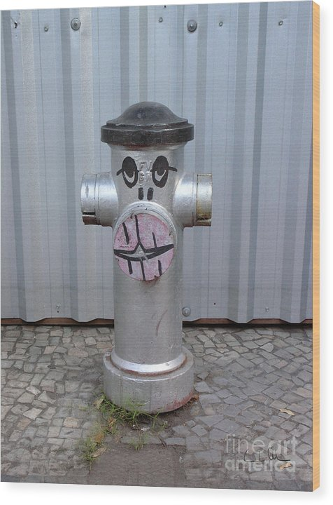 Hydrant Wood Print featuring the photograph Sexy Lips by Carlos Alvim
