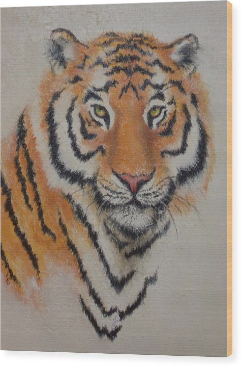 Tiger Wood Print featuring the painting Tiger Portrait by Joann Shular