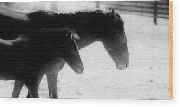 Wood Print featuring the digital art 118 by Wynema Ranch