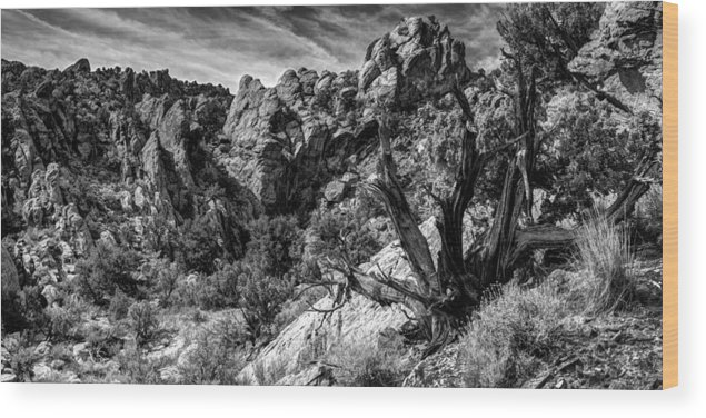 Utah Wood Print featuring the photograph Ancient Witness by TL Mair