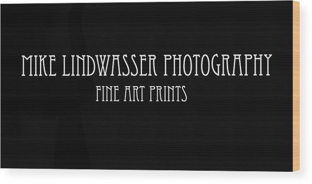Wood Print featuring the photograph Banner by Mike Lindwasser Photography