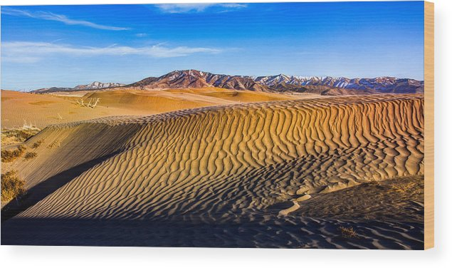 Utah Wood Print featuring the photograph Desert Lines by Chad Dutson