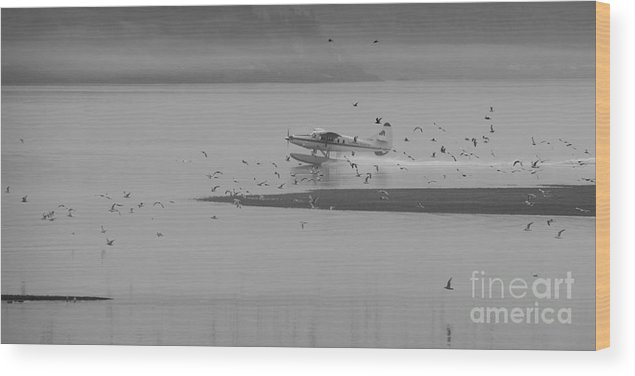 Plane Wood Print featuring the photograph Early Take Off by Inge Riis McDonald