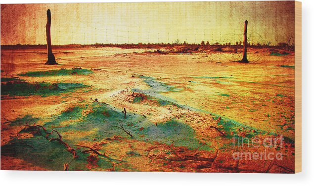 Vintage Wood Print featuring the photograph Salted Land by Phill Petrovic