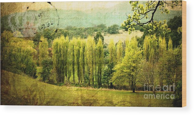 Vintage Wood Print featuring the photograph Stamped By History by Phill Petrovic