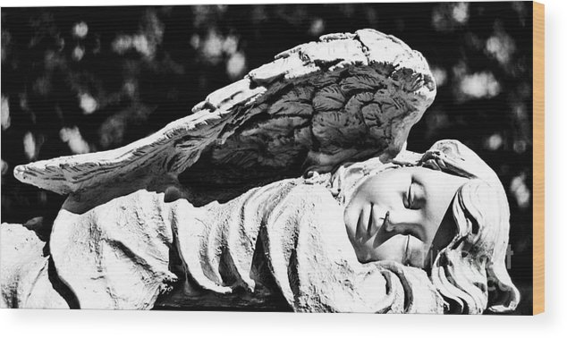 Angel Wood Print featuring the photograph Sweet Dreams by Catherine Hill
