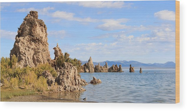 Mono Lake Wood Print featuring the photograph Tufa Tower by Richard Balison