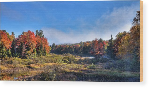 David Patterson Wood Print featuring the photograph Autumn Panorama At The Green Bridge by David Patterson