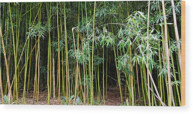 Bamboo Wind Chimes Wood Print featuring the photograph Bamboo Wind Chimes Waimoku Falls Trail Hana Maui Hawaii by Michael Bessler