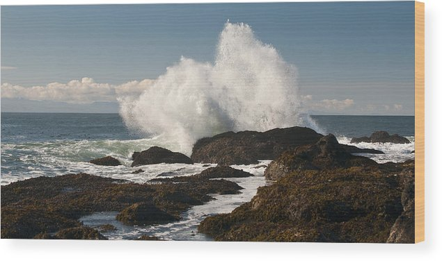 Shoreline Wood Print featuring the photograph Breaking On The Shore by Chad Davis