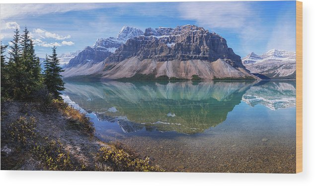 Crowfoot Reflection Wood Print featuring the photograph Crowfoot Reflection by Chad Dutson