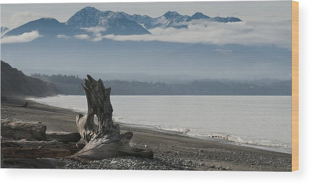 Landscape Wood Print featuring the photograph Log Under Clouds by Chad Davis