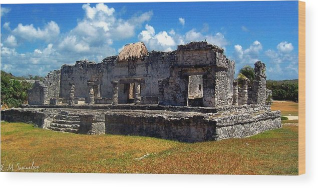 Landscape Wood Print featuring the photograph Mayan Ruins In Tulum 2 by Elise Samuelson