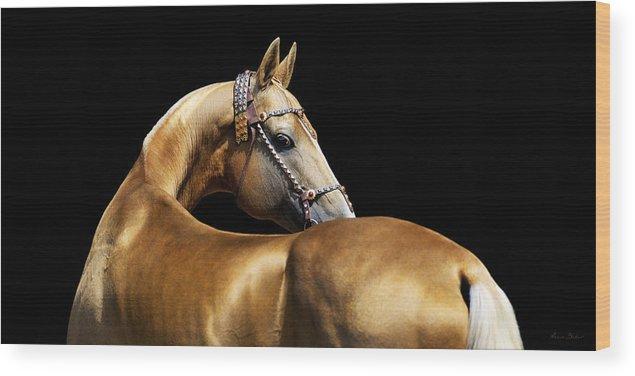 Horses Wood Print featuring the photograph Palvan by Artur Baboev