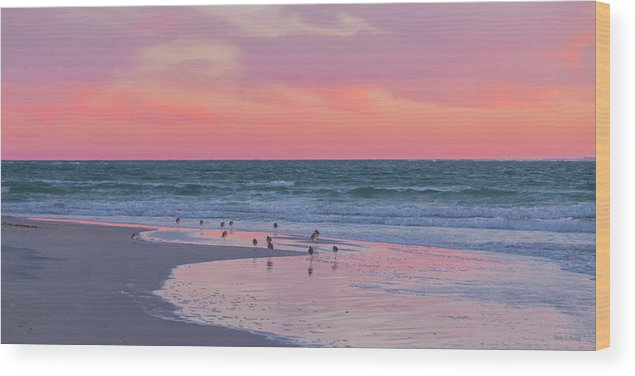 Sunset Wood Print featuring the photograph Peaceful Witnesses by Betsy Knapp